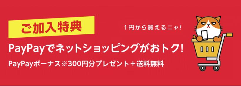 PayPayボーナス300円分